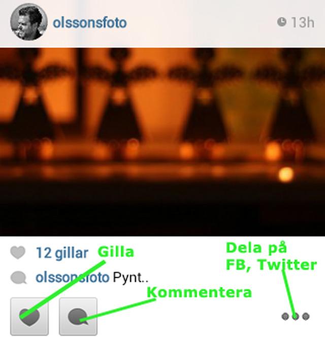 Dela och gilla på Instagram