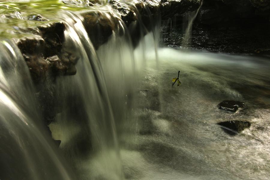 Pålsjö skog - forsande vatten